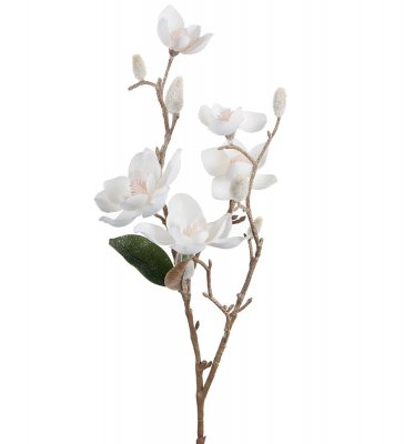 Vit Magnolia med is 50cm konstväxt Mr Plant